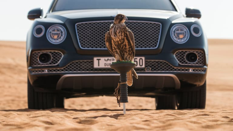 Bespoke Luxury & the History of Hunting Converge in the Bentley Bentayga Falconry Edition