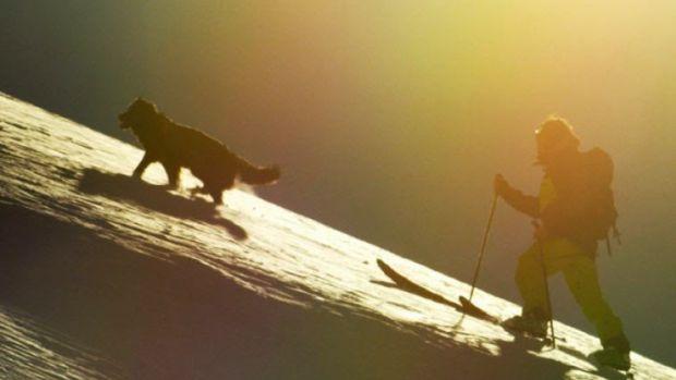 The Shadow Campaign  Sun Dog.jpg