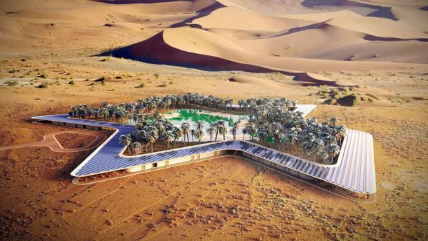 Oasis-Eco-Resort_Baharash-Architecture_portfolio-image.jpg