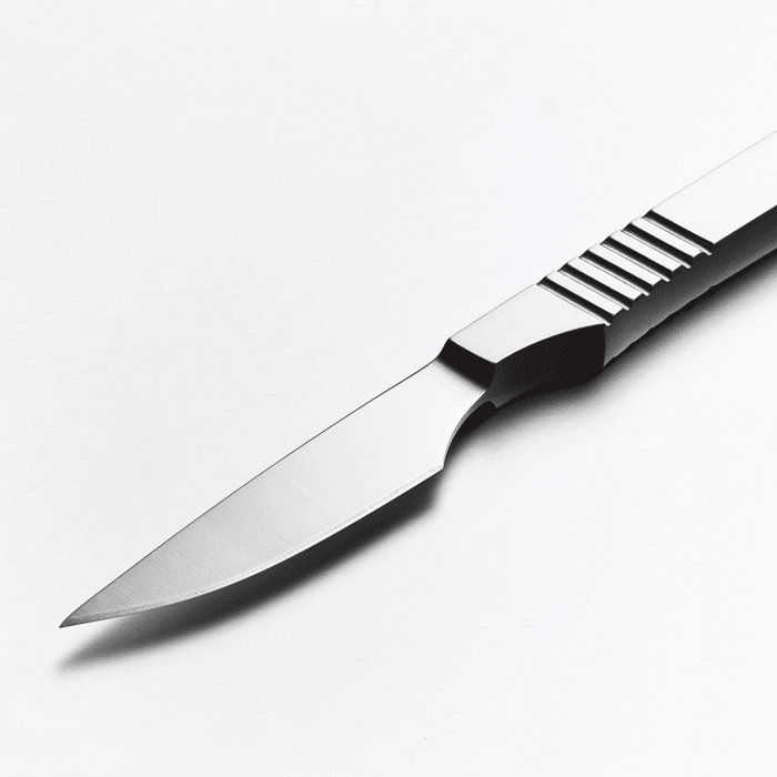 The World's Most Beautiful Steak Knife