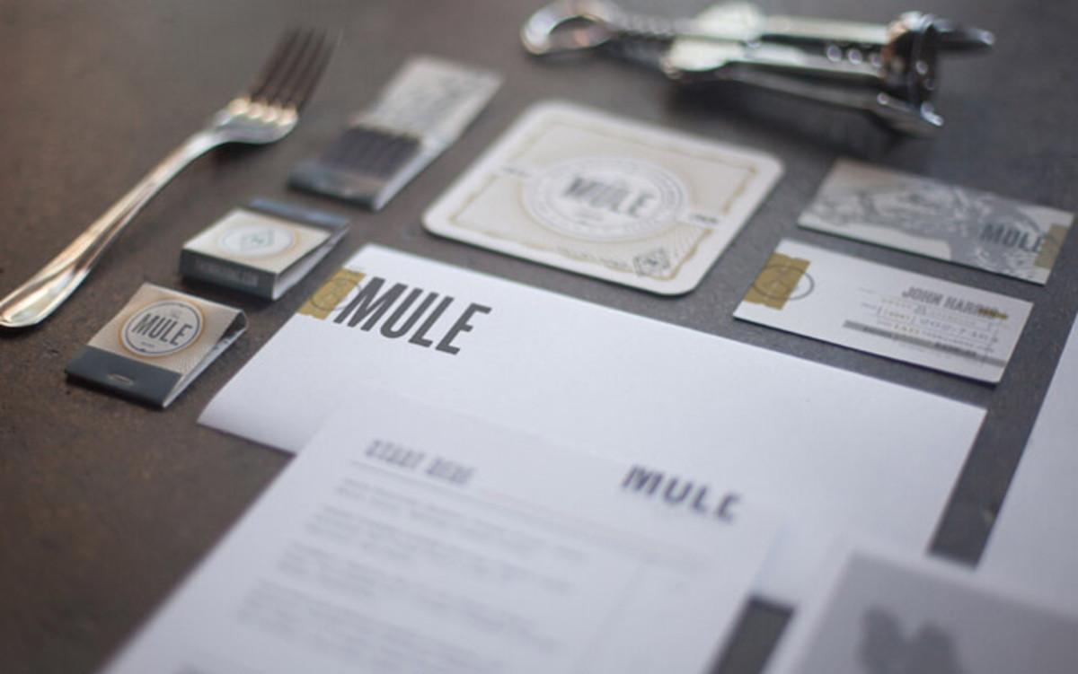 mule_PHOTO_01