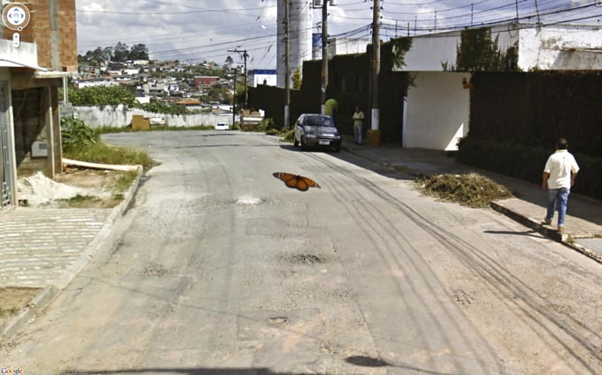 funny-google-street-view-photos-20
