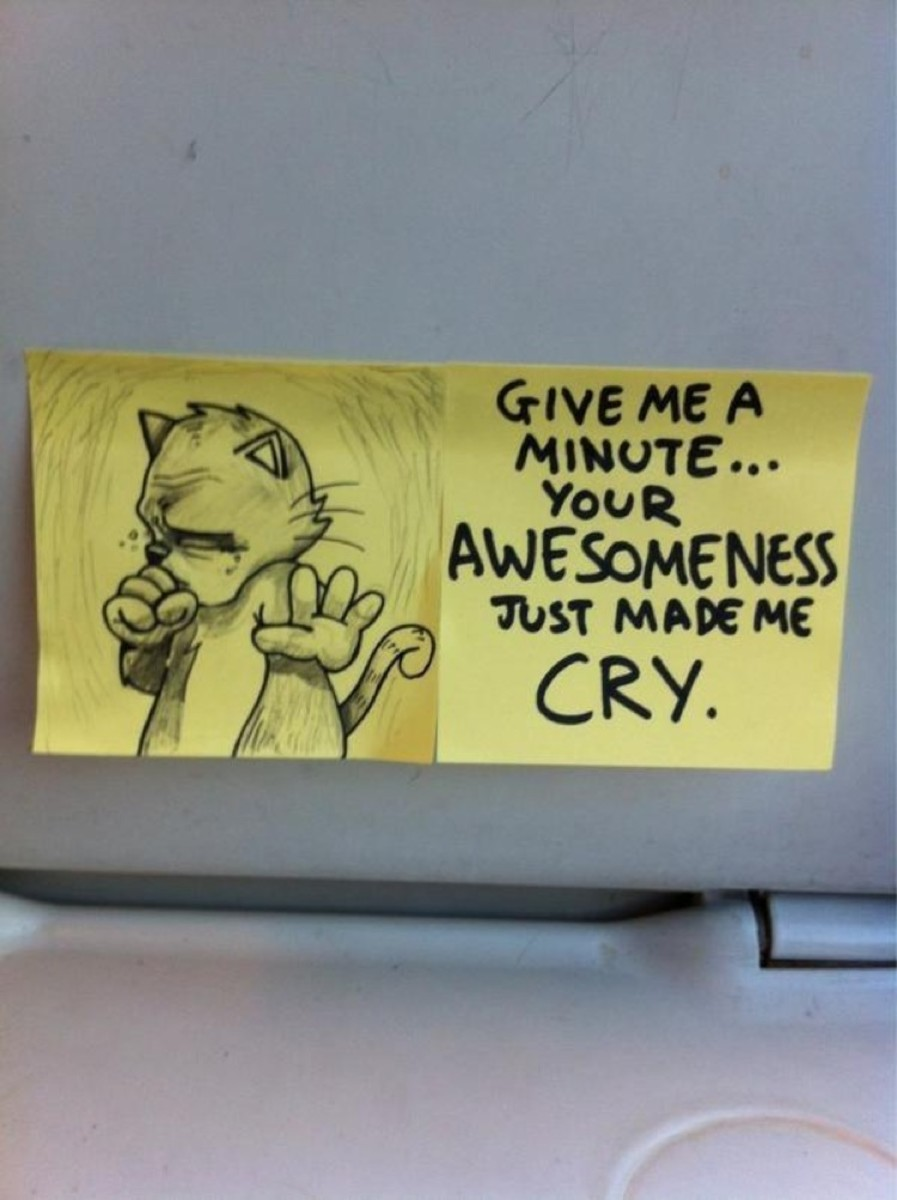 funny-cat-post-it-notes-10