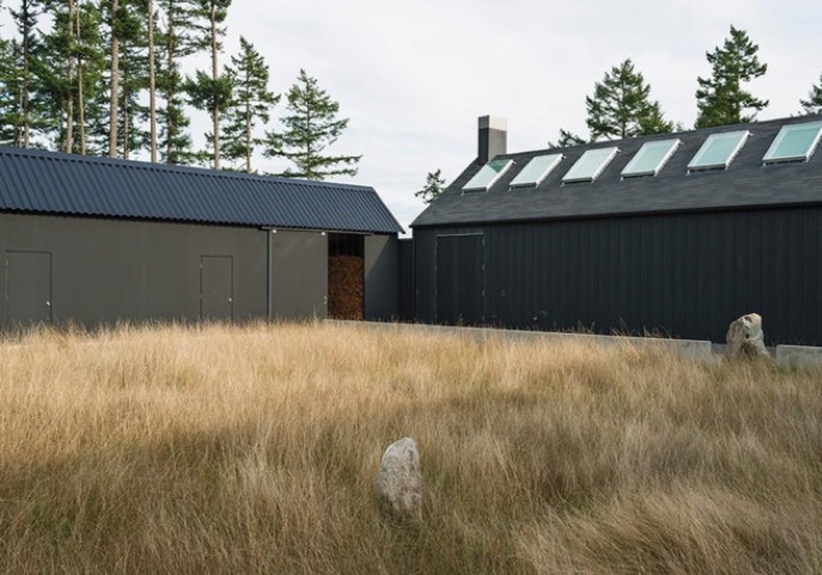 art-life-black-exterior-native-grasses