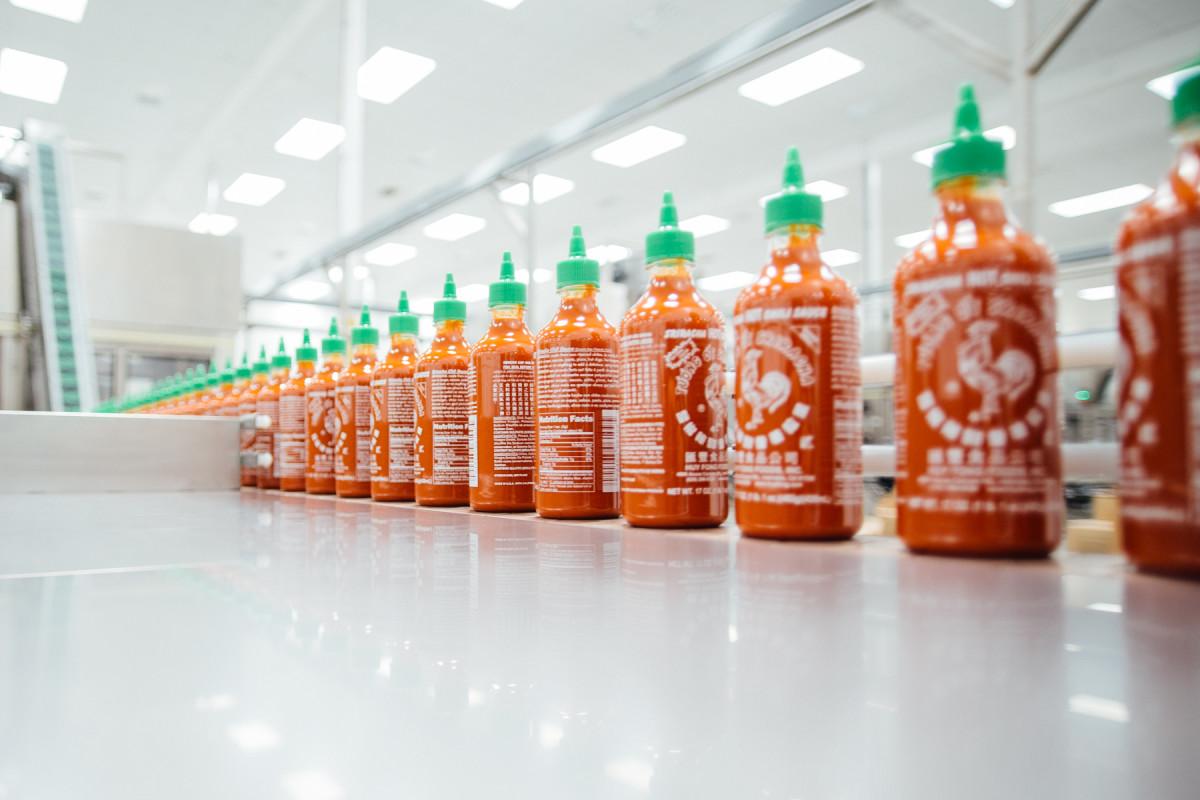 process-srirachas-famous-sauce