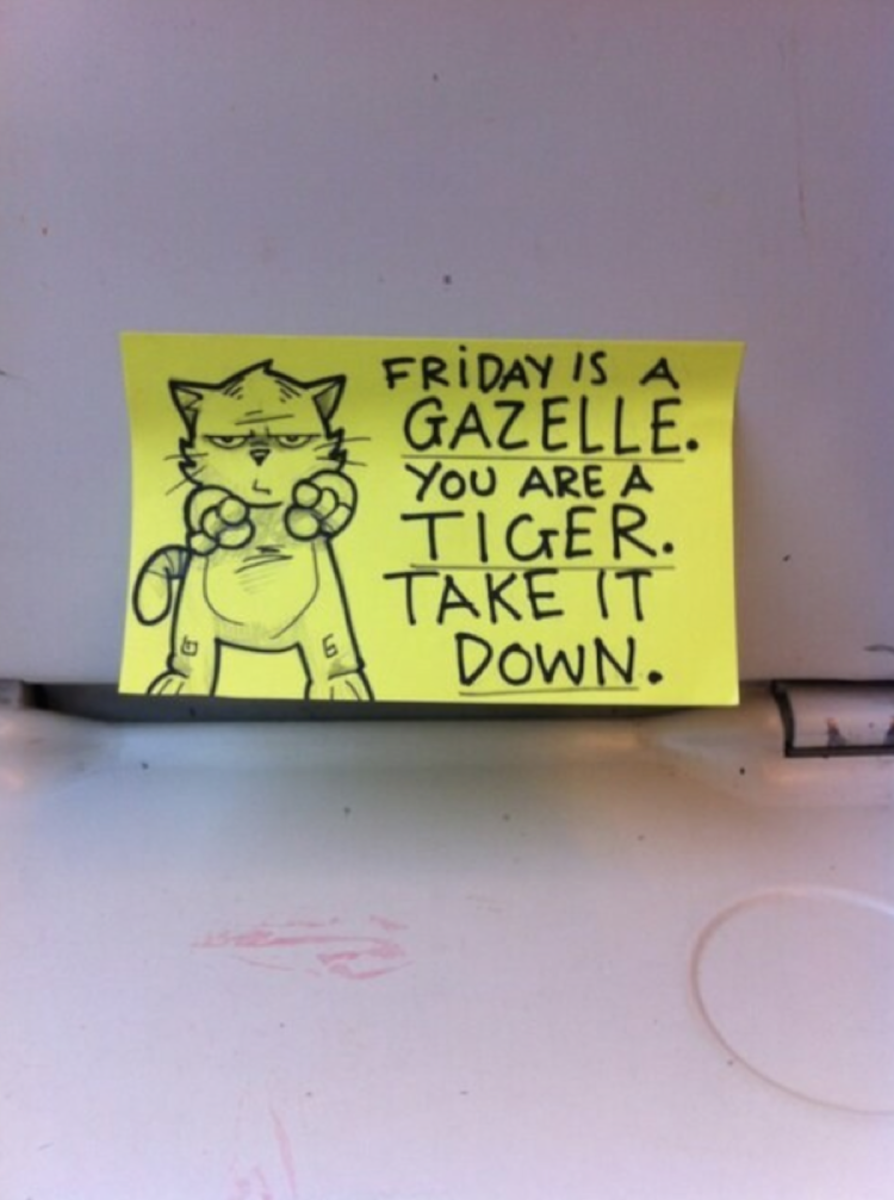funny-cat-post-it-notes-9