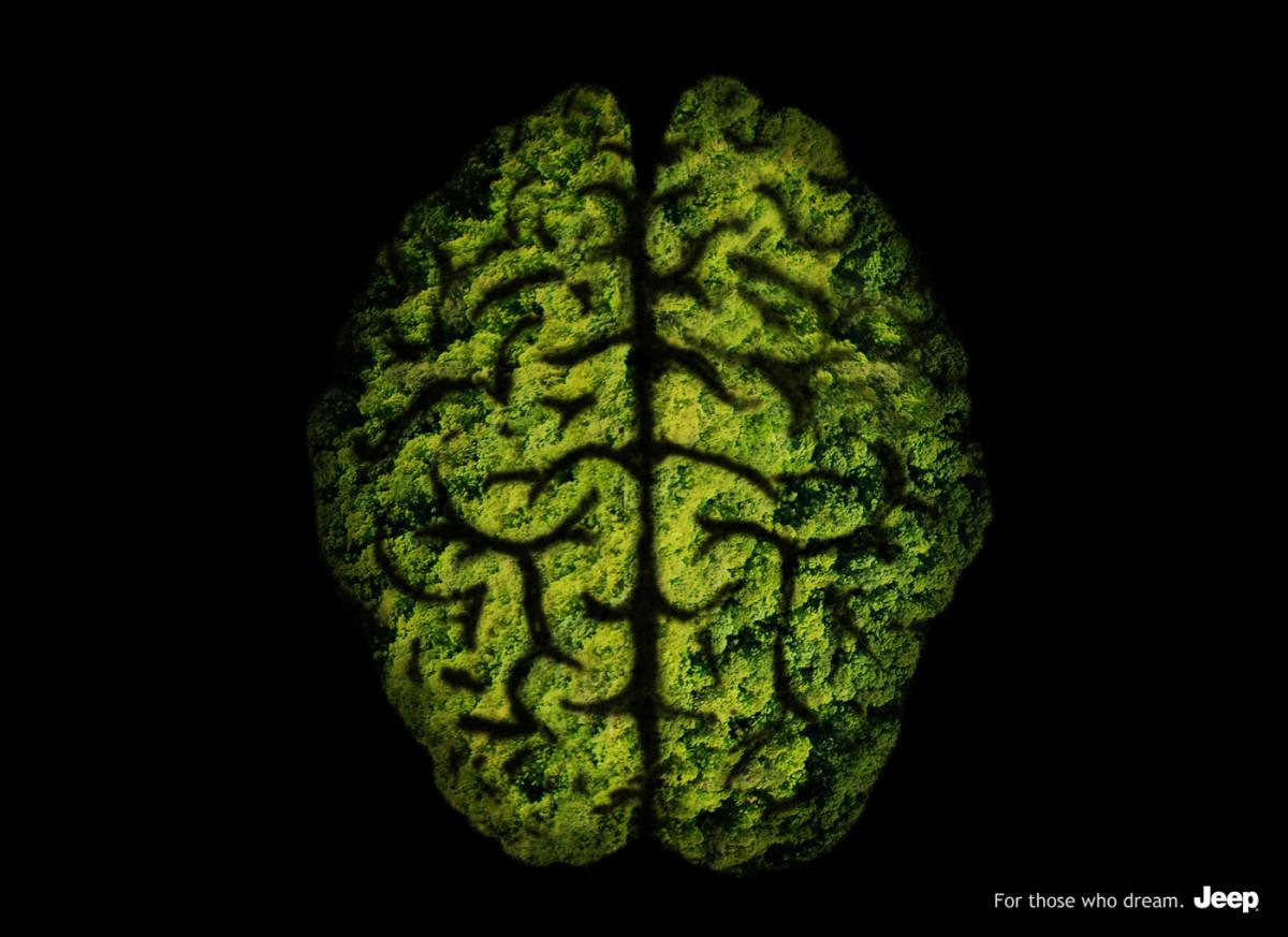 JEEP_Brain_RGB