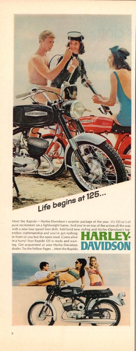 Harley_4.jpg