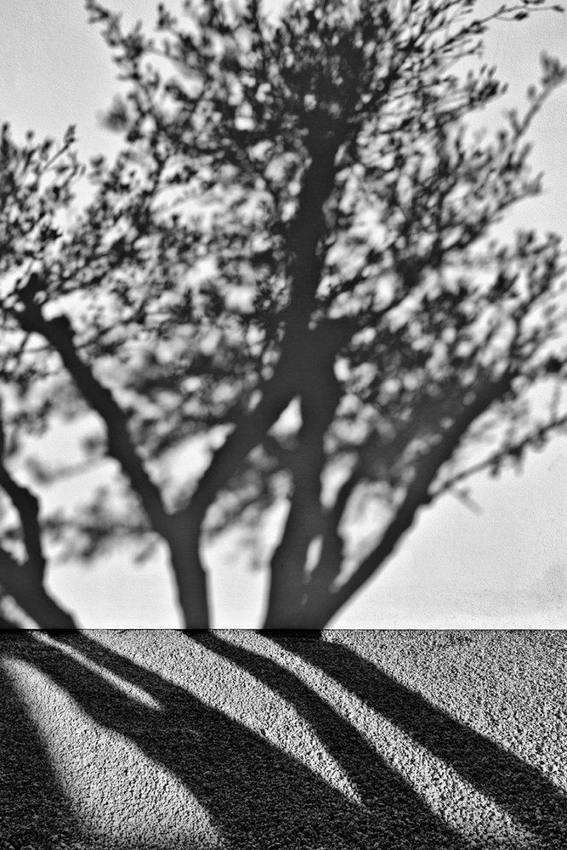 © Serge Anton